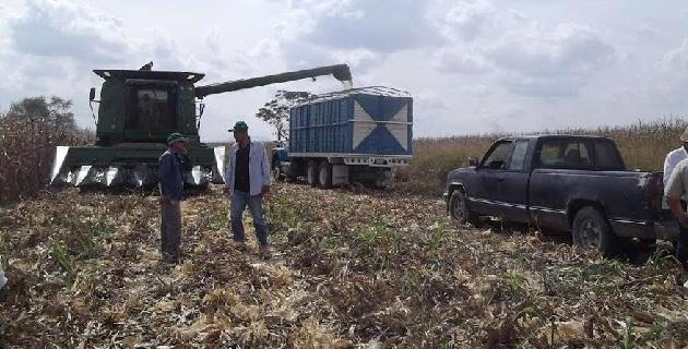 Rodríguez López afirmó que este tipo de reuniones regionales son necesarios porque se mantiene informados a los directores de asuntos agropecuarios y comisariados ejidales sobre las expectativas que tiene el precio de los granos