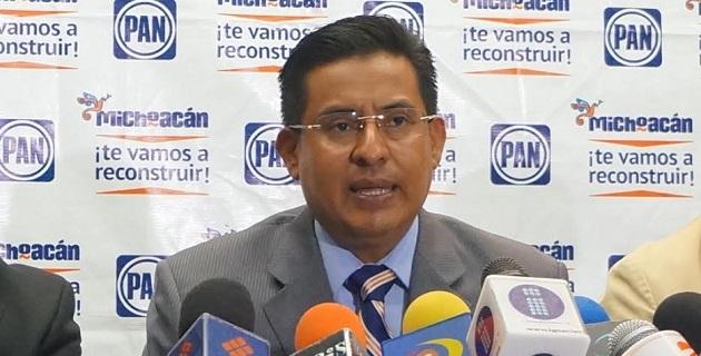 Para Chávez Zavala, la decisión de Peña Nieto de implementar un operativo especial en Tierra Caliente coincide con la exigencia del blanquiazul sobre corregir la errática estrategia del comisionado nacional, Alfredo Castillo