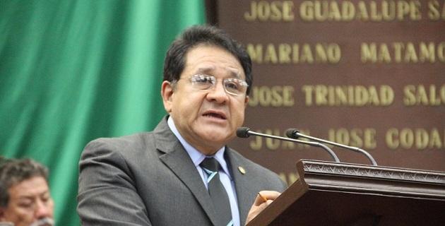 """Rosales Reyes reconoció que es posible que la Comisión creada el 14 de enero del presente año, """"no haya resuelto en 11 meses la compleja problemática que en Michoacán se creó en 12 años"""""""