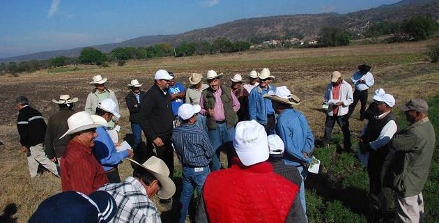 Jaime Rodríguez López se reúne con productores y productoras de Lenteja de Coeneo y Huaniqueo