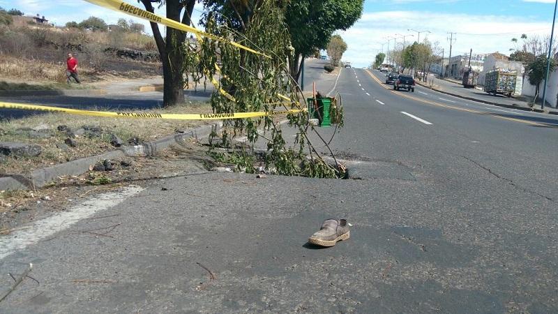 Vecinos ya colocaron ramas y una cinta fluorescente para tratar de impedir más accidentes en la zona (FOTO: FRANCISCO ALBERTO SOTOMAYOR)