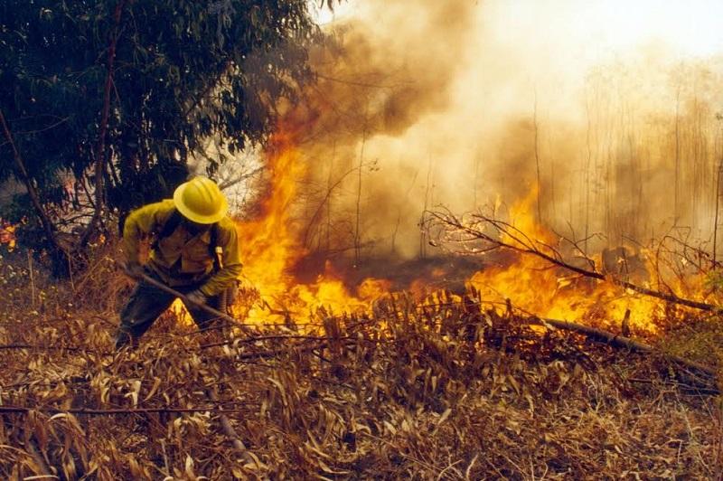 """El temporal de incendios forestales se pronostica como """"muy agresivo"""";: se invita a la ciudadanía a prevenir los incendios y reportarlos en forma inmediata al número de emergencia 066"""