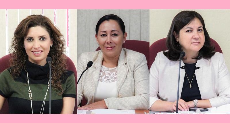 En el marco del Día Internacional de la Mujer, las Consejeras participarán en diversos encuentros y expondrán sus opiniones y experiencias a través de pláticas y conferencias en el interior del estado