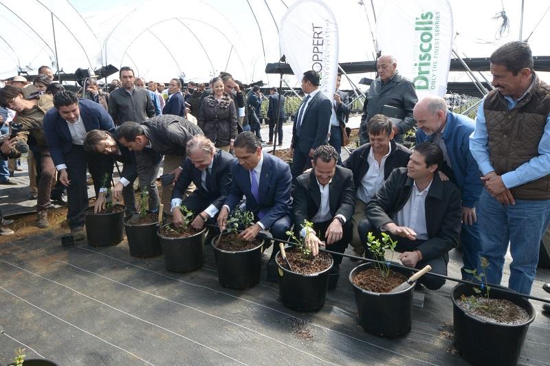 Acude el presidente municipal a la inauguración de la empresa holandesa Koppert Development Institute