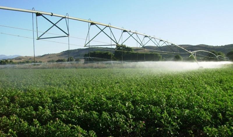 Incorporar 25 mil hectáreas, así como distribuir 20 mil vaquillas, la meta, informa Israel Tentory García