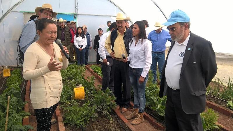El objetivo, es mejorar la alimentación de las familias del sector campesino y regresar al cultivo a través de pequeños huertos familiares o de traspatio