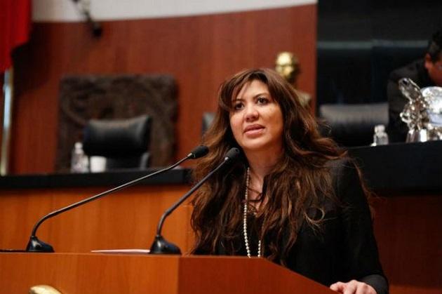 Entre los cargos que desempeñó Arriola Gordillo figuran: diputada federal en la LX Legislatura y fue parte de la Asamblea Legislativa del Distrito Federal en su V Legislatura