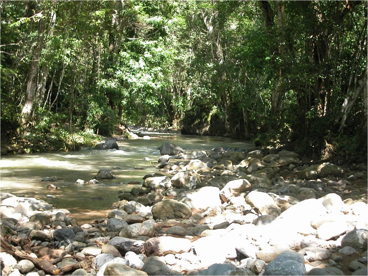 El Barrancón de las Guacamayas, en Chinicuila