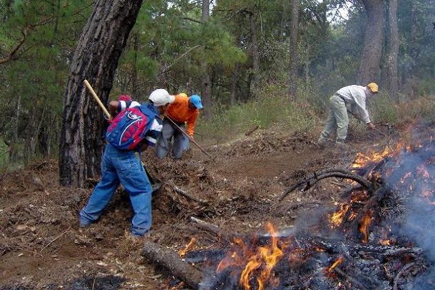 El director general de la Cofom, subrayó que, por instrucciones del gobernador Silvano Aureoles se atenderá de inmediato cualquier incendio forestal que se registre en la geografía michoacana