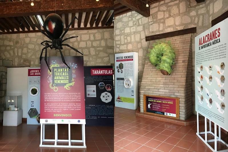 """Durante dos semanas, dijo, los visitantes pudieron disfrutar aún de la Exposición """"Plantas Toxicas y animales venenosos"""", la Exposición """"El Cerebro"""" y las exposiciones permanentes"""