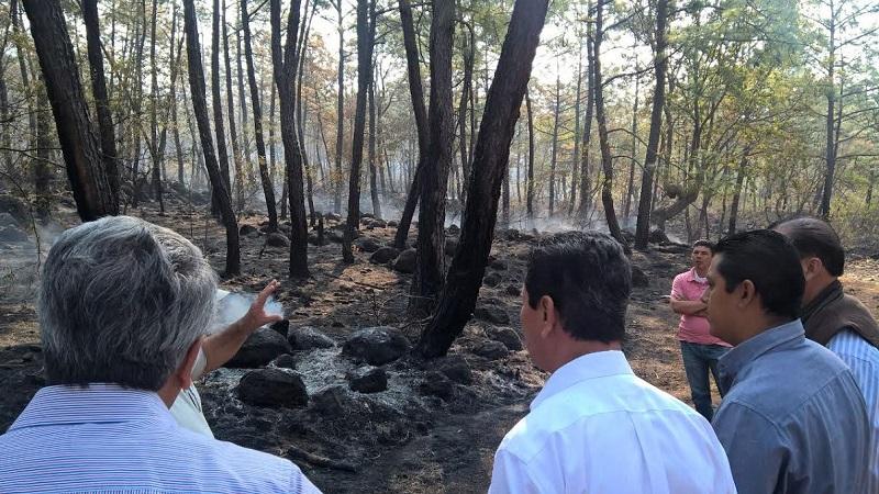 Acompañado del alcalde, el secretario Israel Tentory García, visita el ejido de Taretán en donde el fuego afectó a 150 hectáreas de bosque