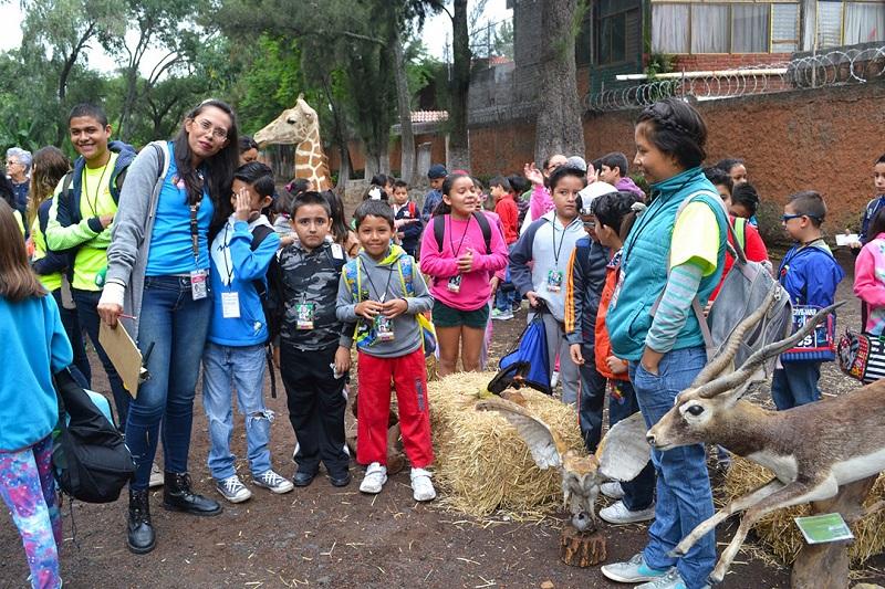 Los participantes aprenderán mediante talleres las características de las cuatro áreas que componen el Zoológico de Morelia: reptiles, mamíferos, peces y aves