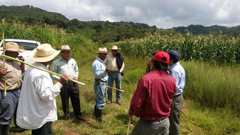 Los fondos para este programa tienen origen en el Gobierno del Estado de Michoacán y durante el actual ejercicio se atenderá a 920 beneficiarios del municipio de Morelia