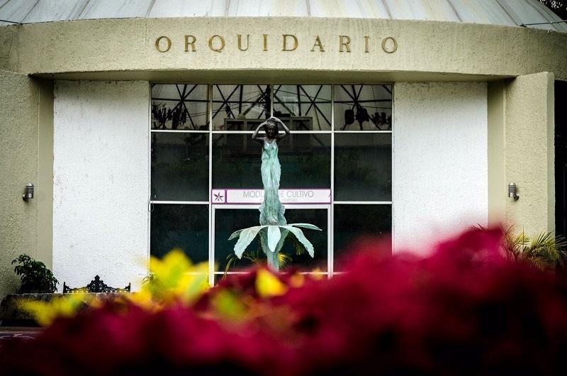 La Expo Orquídea 2016 será inaugurada este jueves 13 de octubre a las 10:00 horas en el Jardín Orquidario