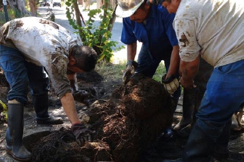 Las labores de limpieza se llevarán a cabo con 54 trabajadores del Organismo Operador, limpiando el canal en una jornada intensiva