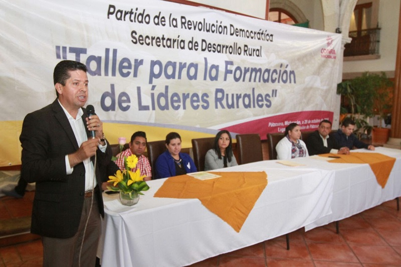 Cabe señalar, que el PRD ha llevado talleres para la prevención de la violencia de género, historia de la izquierda en Michoacán, marketing político y para líderes rurales