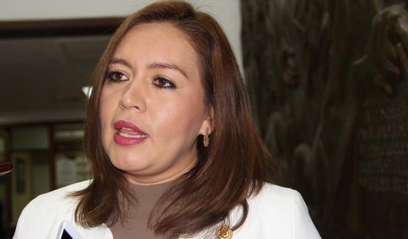 La diputada por el Distrito 10 de Morelia Noroeste recordó que el derecho a la salud, es un derecho humano fundamental que exige de la acción contundente para garantizar que todos los ciudadanos puedan acceder a esta