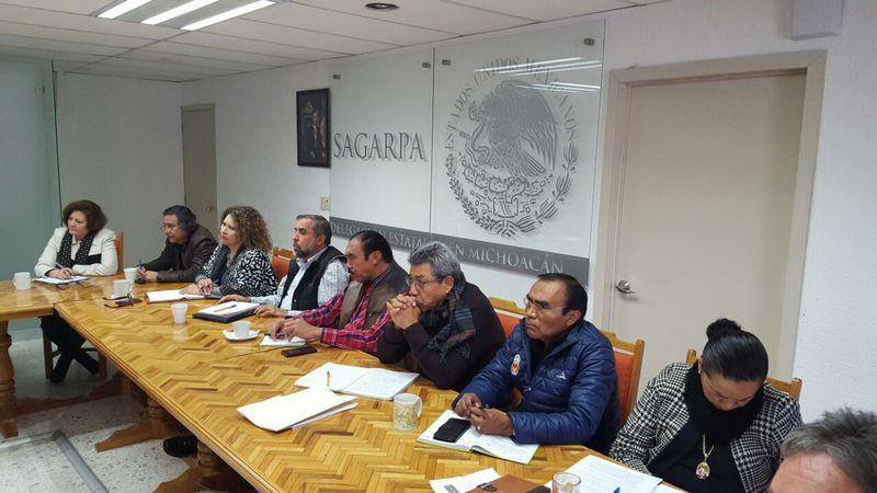 El coordinador de Delegados, Víctor Hugo Celaya Celaya, emitió un mensaje a todos los titulares de las Delegaciones de la SAGARPA en el país, con la intención de unificar esfuerzos para que México consiga explotar toda su capacidad en el campo nacional
