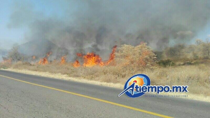 Comienza a causa estragos la temporada de estiaje en distintos puntos de Michoacán (FOTOS: FRANCISCO ALBERTO SOTOMAYOR)