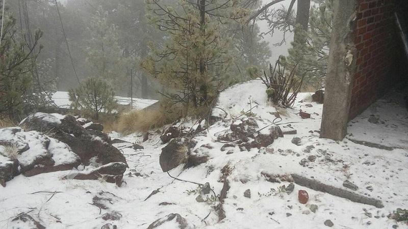 A consecuencia del Frente Frío Número 28 que azota gran parte del país, está mañana alrededor de las 06:00 horas de este viernes se registró una nevada en la región del bosque del municipio de Tancítaro