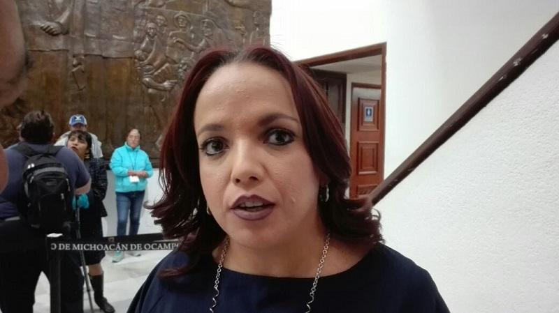 De acuerdo a la diputada, la Comisión Inspectora de la Auditoria Superior de Michoacán, será la encargada de emitir la convocatoria pública para elegir a los 3 veedores, mediante la selección desde varias ternas