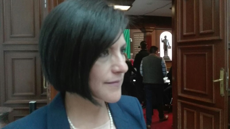 La diputada aseguró que tras la reunión que se lleve con el secretario de finanzas habrá un mejor panorama del escenario para poder avanzar en el tema