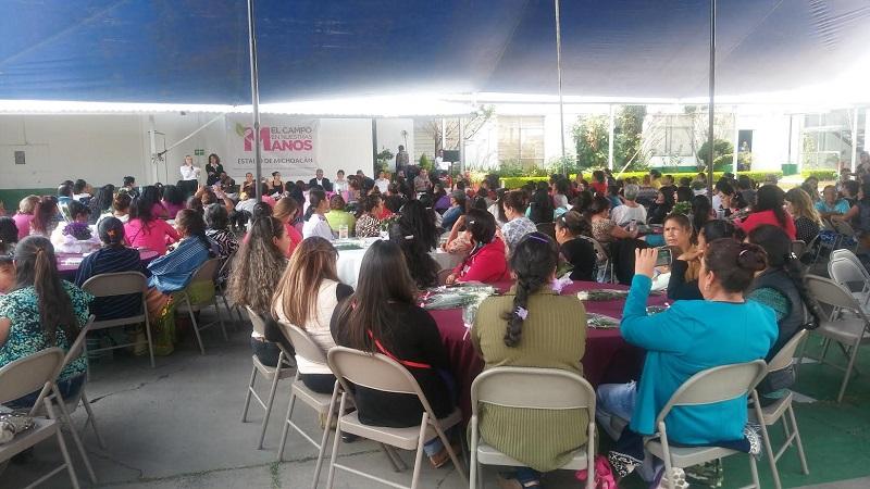 En los festejos de este día, la SAGARPA en Michoacán preparó una serie de conferencias con temas concernientes a la agricultura que les permitirán desarrollar habilidades que a la larga les genere un beneficio económico para ellas y sus familias