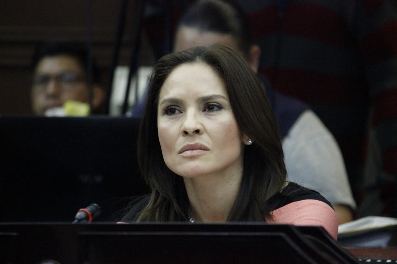 """""""Cualquier conducta que implique una sanción administrativa o una pena ya se encuentran previstos en sus correspondientes ordenamientos, no es necesaria esta ley"""", señaló la diputada del PRD"""