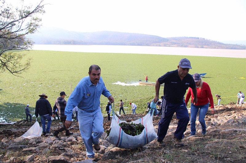 Personal de la Dirección de Medio Ambiente y OOAPAS encabezó la jornada de limpieza