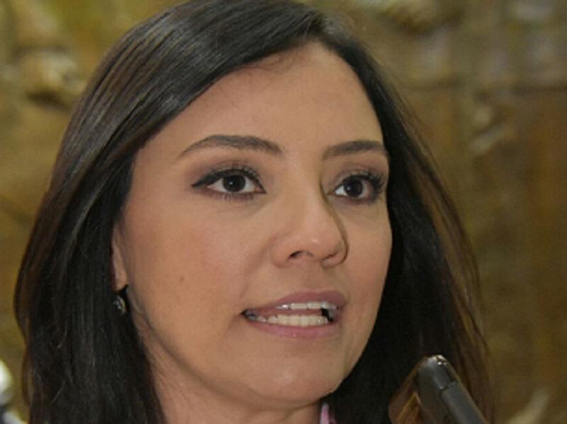 La legisladora reconoció el trabajo que en este tema realizaron las comisiones de Hacienda y de Industria y Comercio