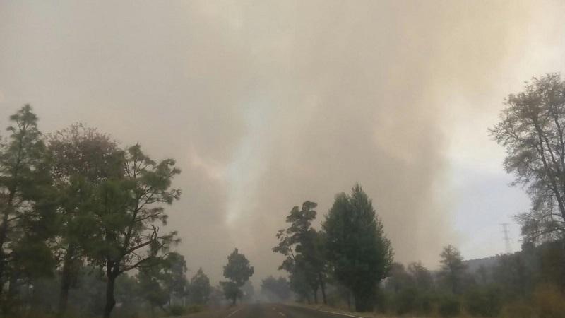 Brigadistas contra incendios forestales ya laboran en la zona