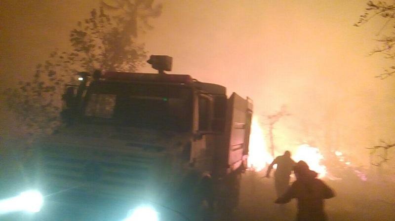 Continúa combate de 16 incidentes más; participan los tres niveles de gobierno y sociedad civil