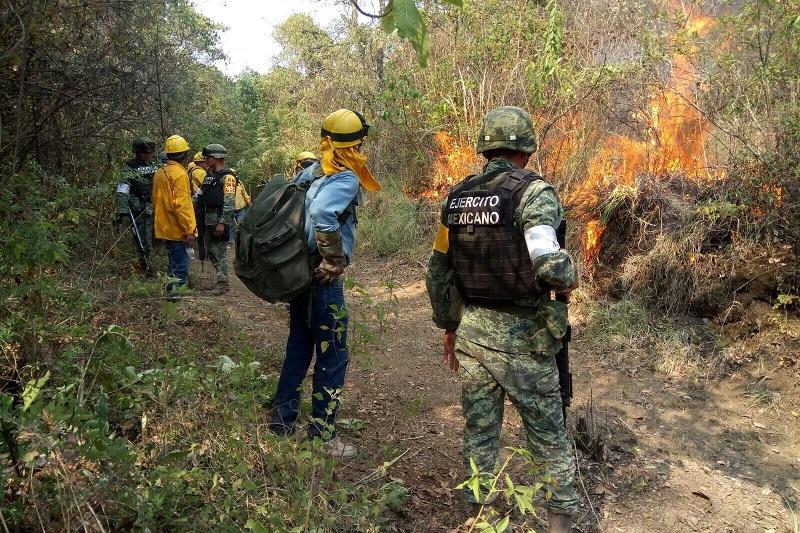 Personal del 17º Batallón de Infantería, proporcionó apoyo para sofocar el incendio registrado a inmediaciones del municipio de Uruapan, abatiendo con éxito el 100 por ciento del fuego