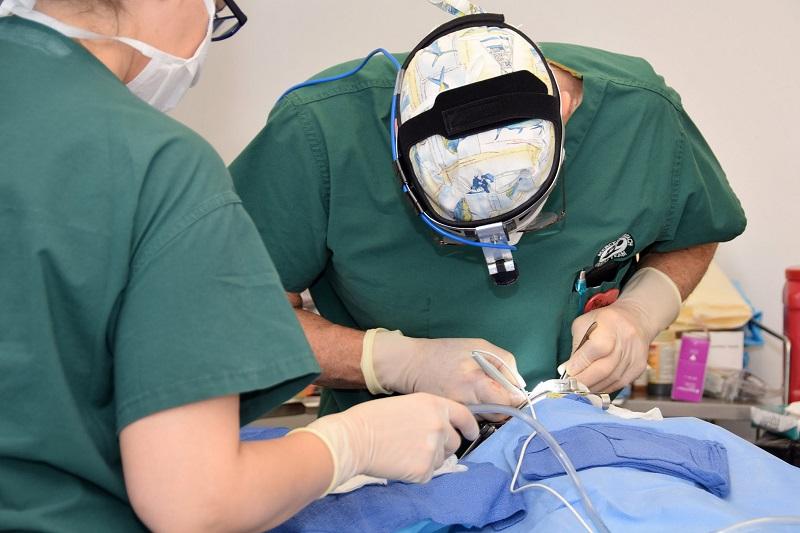 Las cirugías que iniciaron hoy finalizarán el próximo viernes en el Hospital Infantil