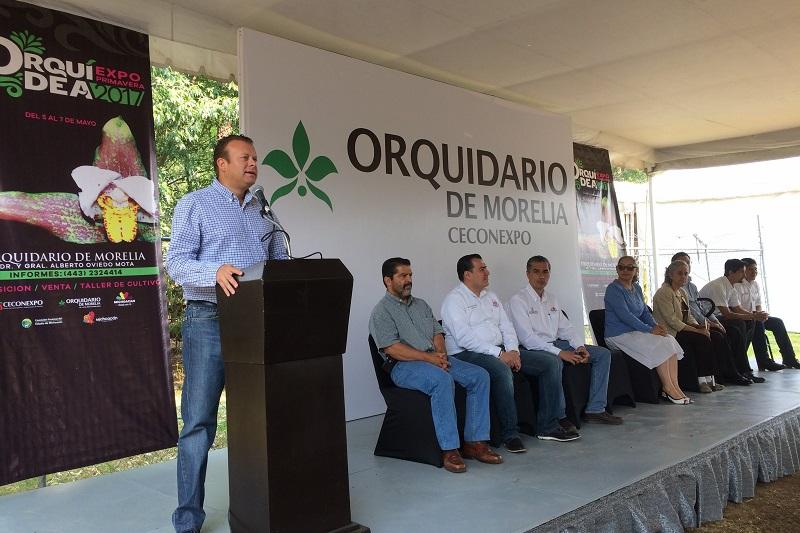 Del 5 al 7 de mayo, en el Jardín del Orquidario del Ceconexpo de Morelia, se exhibirán cerca de 50 especies.