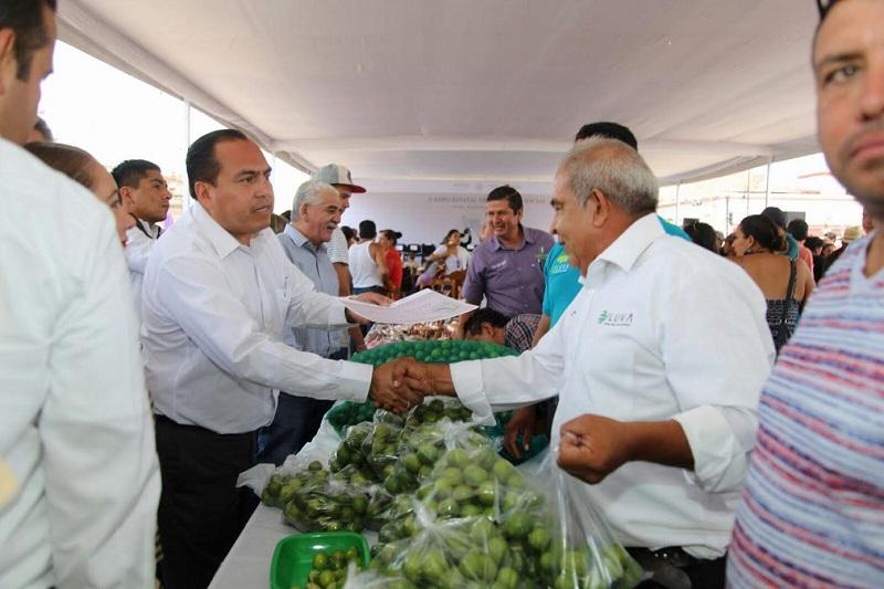 La exportación de papaya, plátano, frutillas y guayaba, es un ejemplo del trabajo en equipo que hacen las dependencias federales en Michoacán, en las que participa la SAGARPA, Secretaria de Economía e INAES, destacó Color Gasca