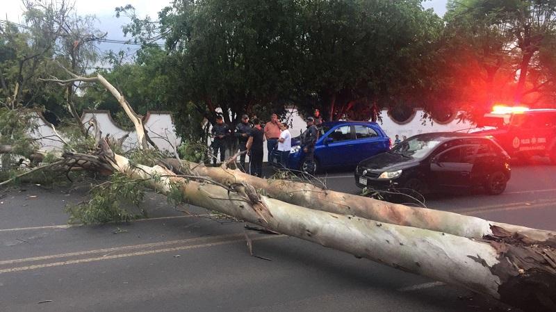 Esto ocurrió frente a un conocido salón de eventos, a pocos pasos de Star Médica, los cenadores y el Zoológico de Morelia (FOTOS: RAFAEL PINEDA)