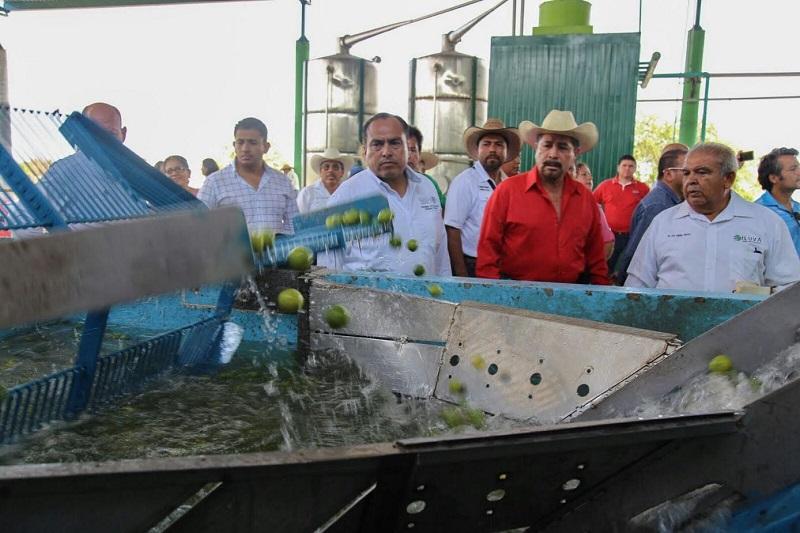 En gira de trabajo por la localidad de Cenobio Moreno, el alcalde Cesar Chávez Garibay, reconoció el trabajo de la Secretaria de Desarrollo Social y el compromiso del Luis Miranda Nava, para impulsar a través de la Estrategia de Inclusión Social, la construcción de una Estancia Infantil