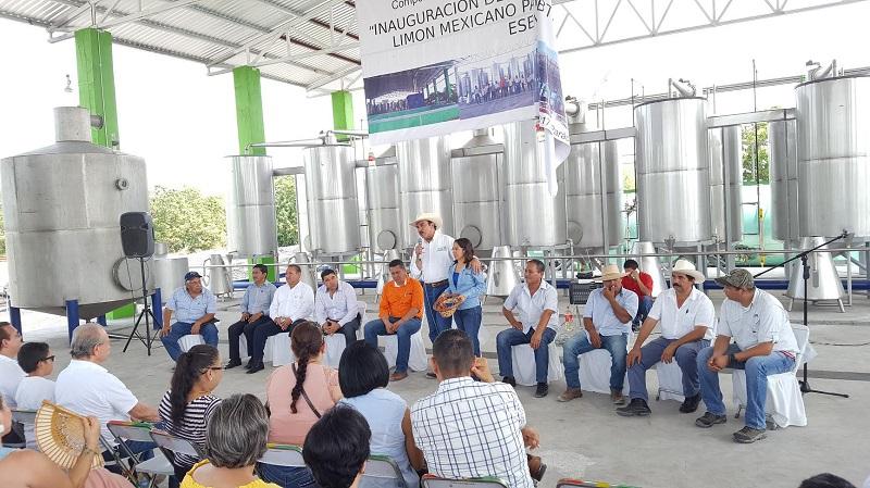 Rodríguez López recordó finalidad de estos apoyos la mejora de la calidad de vida de los productores en base a mejora de comercialización del campo michoacano