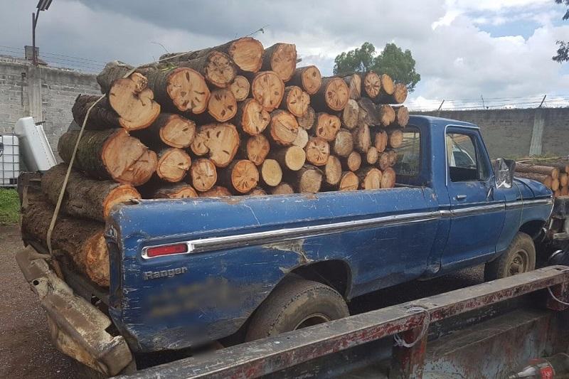 La carga no contaba con documentación que comprobara la legal procedencia y trasporte de la madera, por lo que este material y la unidad motriz fueron puestos a disposición de la autoridad competente