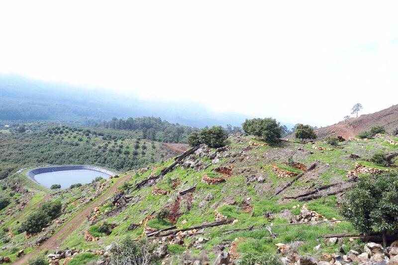 En total se han realizado operativos en 11 municipios de Michoacán: Uruapan, Salvador Escalante, Tingambato, Pátzcuaro, Morelia, Villa Madero, Acuitzio, Charo, Zitácuaro, Tuxpan y ahora Ziracuaretiro, municipios en lo que se está combatiendo de manera frontal el cambio ilegal de uso de suelo
