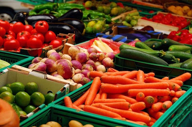 La actividad exportadora del estado de Guanajuato representó más de 21 mil 588 millones de dólares en 2016, en donde el sector agroalimentos se ubicó como uno de los más importantes