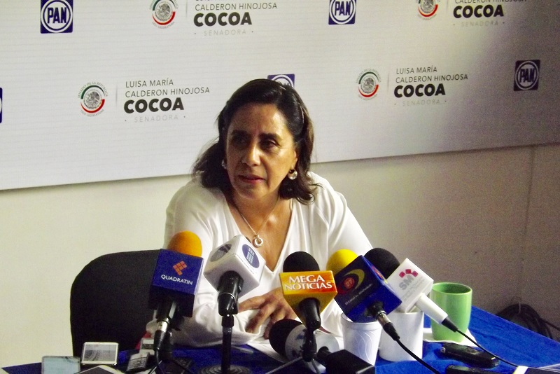 Calderón Hinojosa expuso que los temas que encabezan dichas demandas están relacionados con las sanciones a la tala clandestina, así como el cambio de uso de suelo y el fomento a huertos familiares