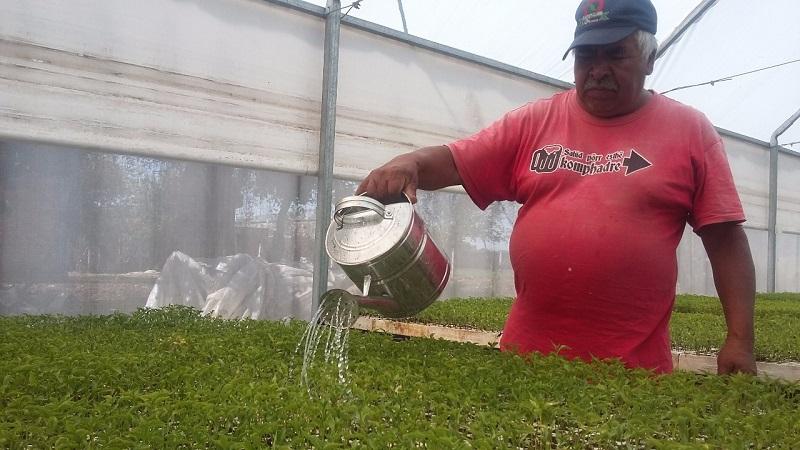 Ocampo Peña reconoció el esfuerzo del Ayuntamiento que encabeza Mauricio Acosta Almanza, por apostarle al desarrollo del campo en sus vertientes agrícola, pecuario y pesquero