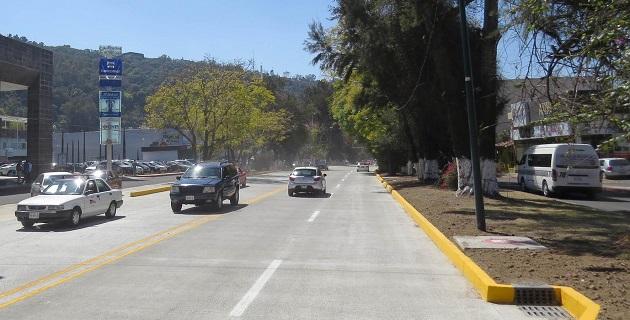 José Luis Gil, secretario de Servicios Públicos, puntualizó que el Gobierno Municipal realiza estas labores para prevenir algún accidente por la caída de las ramas de los árboles o de los mismos árboles que ya están dictaminados
