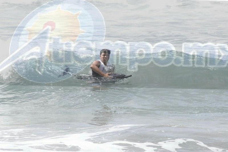 Personal salvavidas de la institución de Protección Civil Municipal acudió a la playa, donde durante varios minutos permanecieron al interior del mar apoyando a este mamífero