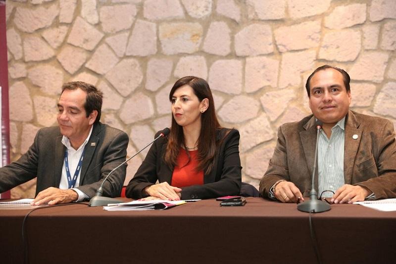 La coordinación institucional ha permitido una disminución constante en los indicadores del rezago social en Michoacán, destaca la subsecretaria de Desarrollo Social, Gabriela Molina