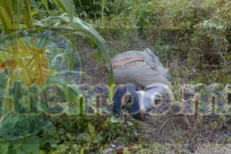 Al lugar arribaron unidades de la Policía Michoacán, así como Protección Civil del municipio de Huandacareo, confirmando los paramédicos que se trataba de un hombre que ya se encontraba sin vida