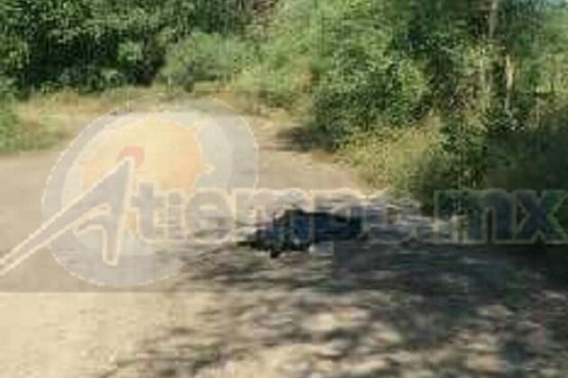 Los restos de la víctima, presumiblemente un hombre, estaban en el interior de una bolsa negra en el camino que conduce a la localidad de Altamira, del referido municipio