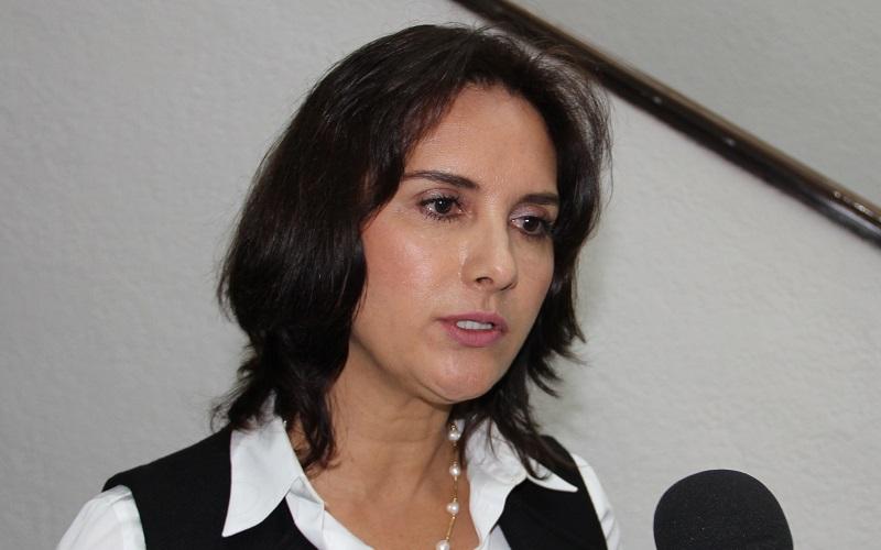 Chávez Flores precisó que dicha iniciativa no pretende en ningún momento cuartar el derecho de manifestación o la libertad de expresión, sino plantea la necesidad de que existan protocolos de seguridad que deban implementar los encargados de mantener el orden público